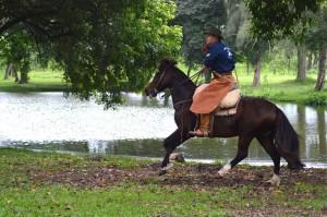 Gaucho a cavalo